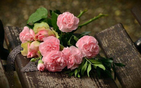 薔薇のイメージ